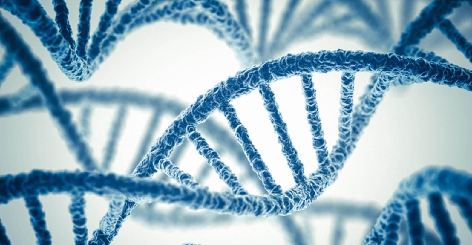 genetics paper writing pro papers com